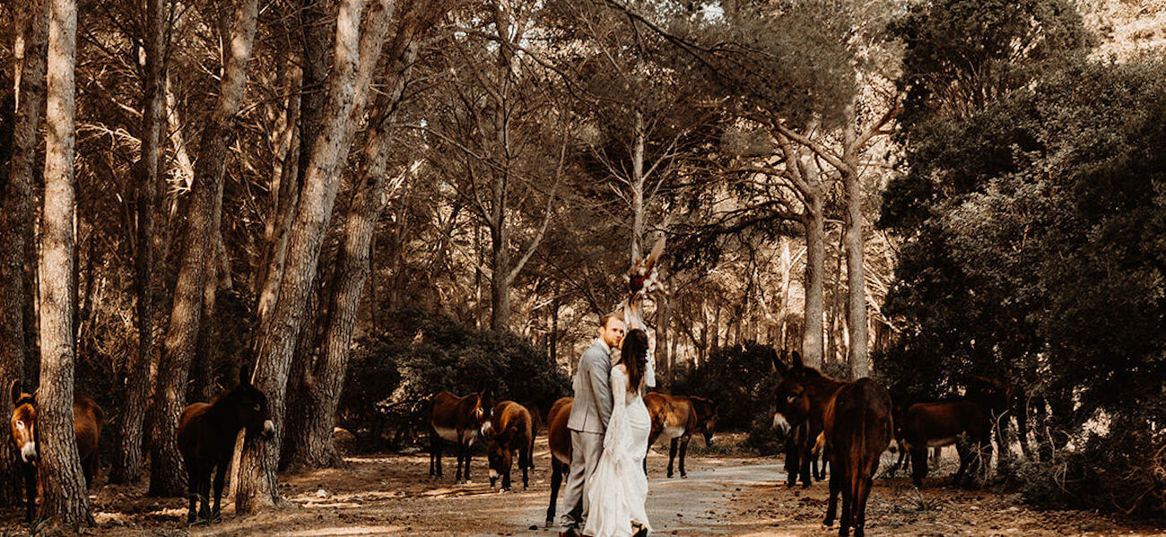 heiraten-im-norden-von-mallorca-titelbild